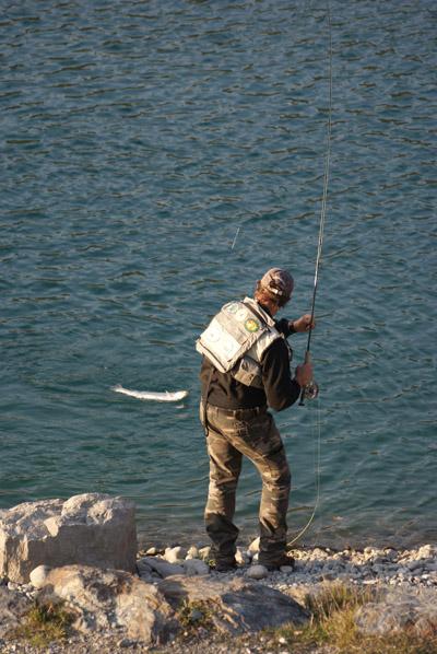 Pêcheur à la mouche - © Sergio Palumbo - 123 Savoie