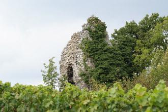 Tours en ruine à Chignin Photos : © Sergio Palumbo - 123 Savoie