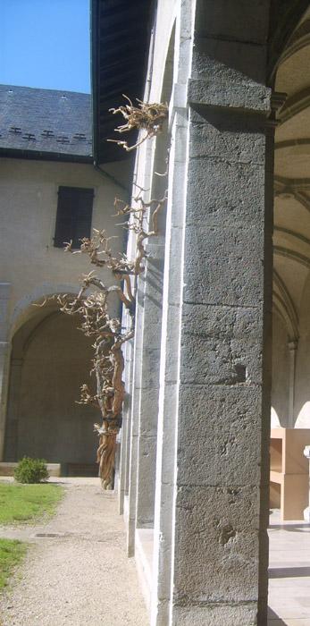 Cloître du Musée Savoisien © 123 Savoie