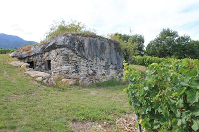 Pierre carrée à Chapareillan, l'une des pierres tombée lors de l'éboulement et qui fut transformée en cave  © 123 Savoie