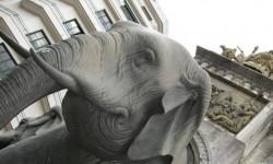 La Fontaine des Eléphants - © Sergio Palumbo - 123 Savoie