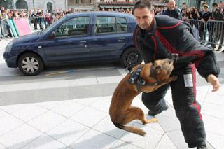 Les rencontres de la sécurité - démo 1 - © Sergio Palumbo - 123 Savoie