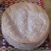 vacherin - fromage
