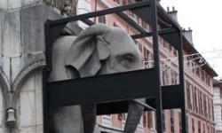 Dépose des Eléphants 5 - © Sergio Palumbo - 123 Savoie