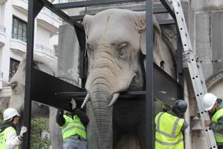 Dépose des Eléphants 6 - © Sergio Palumbo - 123 Savoie