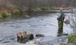Pêcheur dans l'eau