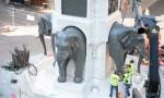 Repose 4ème Eléphant - © Sergio Palumbo - 123 Savoie