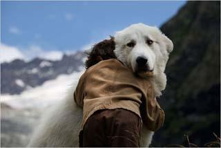 Belle et Sébastien, l'aventure continue 3 - © Gaumont Distribution