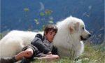 Belle et Sébastien, l'aventure continue 5 - © Gaumont Distribution