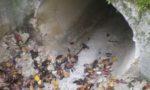 L'utilisation du procédé biologique a permis d'améliorer l'écoulement de l'eau dans le réseau d'assainissement du tunnel du Vuache, le débarrassant de ses dépôts de calcite pour au moins dix ans - © ATMB
