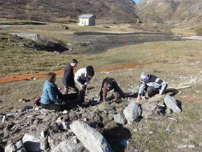 Les experts du Conservatoire Botanique National Alpin et de Karum (bureau d'étude spécialisé en écologie et paysage), ont transplanté les plants de Koelerie du Mont-Cenis sous le regard attentifs de représentants du Parc National de la Vanoise et d'EDF - © EDF - UPA