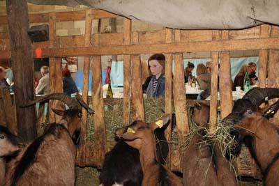 Clé des champs - © Chambre d'agriculture Savoie Mont-Blanc