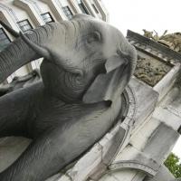 la fontaine des éléphants