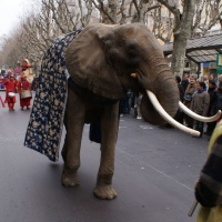 016-carnaval-chambery-2011