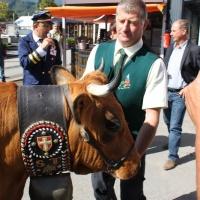 Bella à la Foire de Savoie 2014