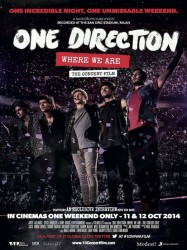 One Direction : Where We Are – The Concert Film