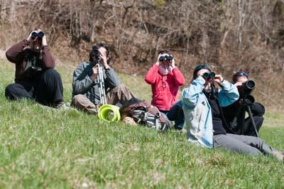 Journée de suivi Parc Naturel Régional du Massif des Bauges