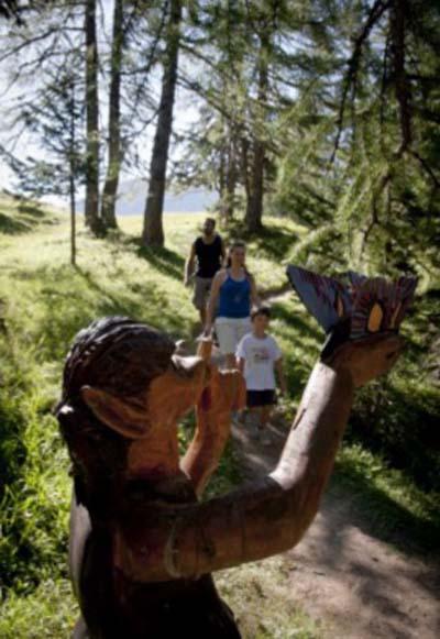Le sentier de la biodiversité à Montalbert