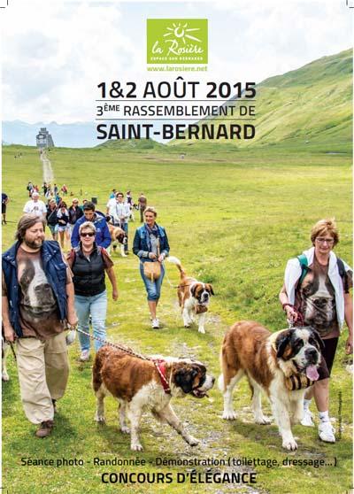 Affiche Rassemblement de Saint-Bernard copie