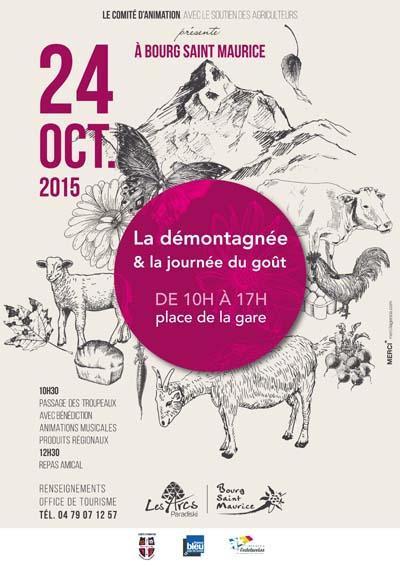 Affiche La démontagnée à Bourg-Saint-Maurice 2015