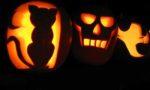 Halloween, les citrouilles n'ont pas bon temps !