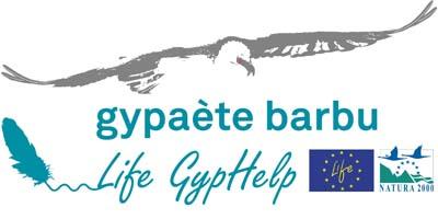 Logo Life GypHelp